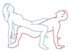 reverse sex position
