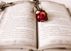ancient book of love potions